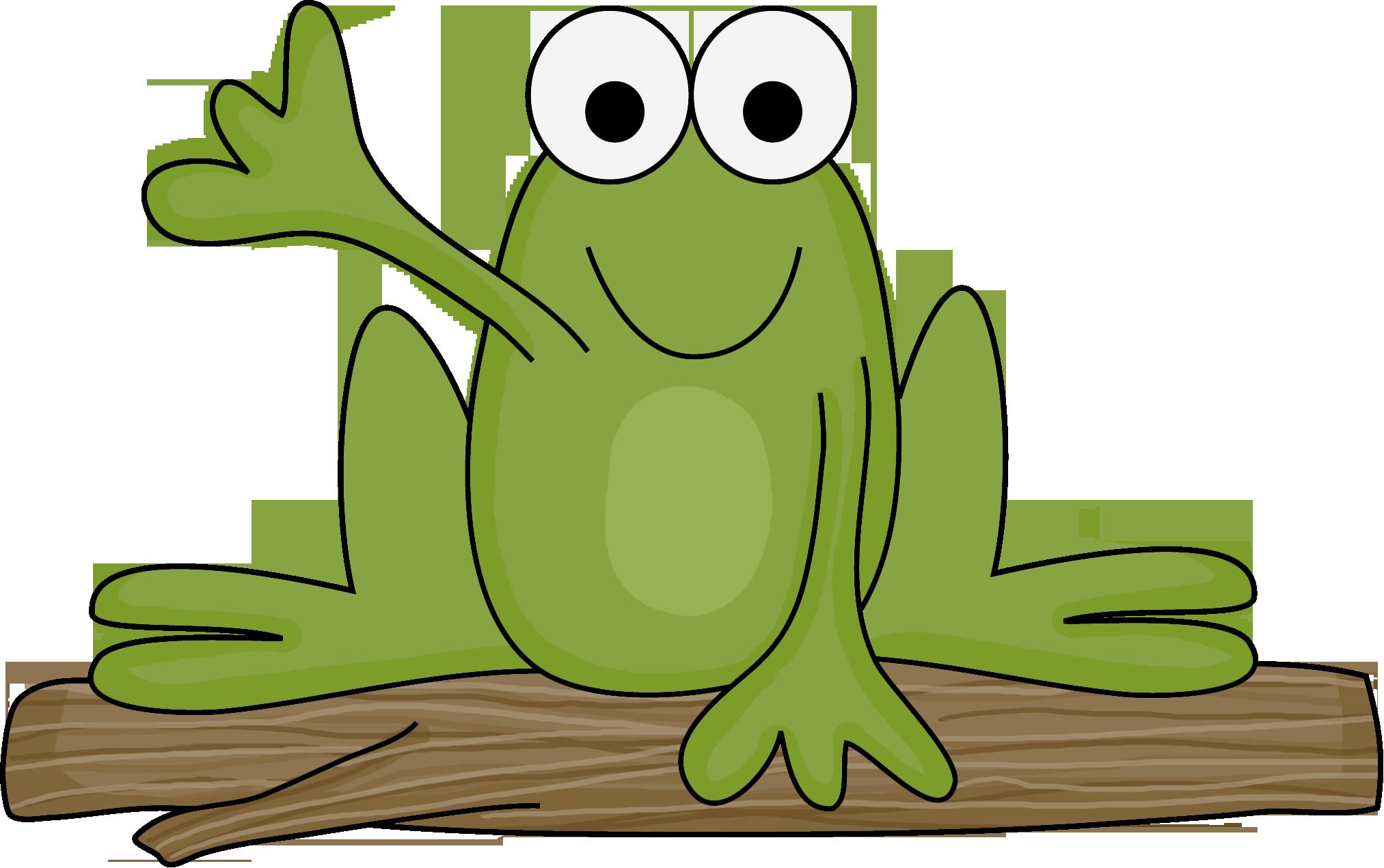 Photo by danimfalcao minus. Frogs clipart classroom