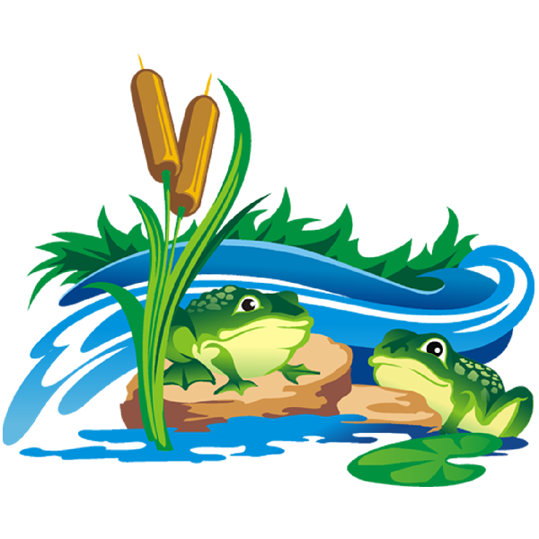 Frogs clipart clear background. Funny frog cartoon animal