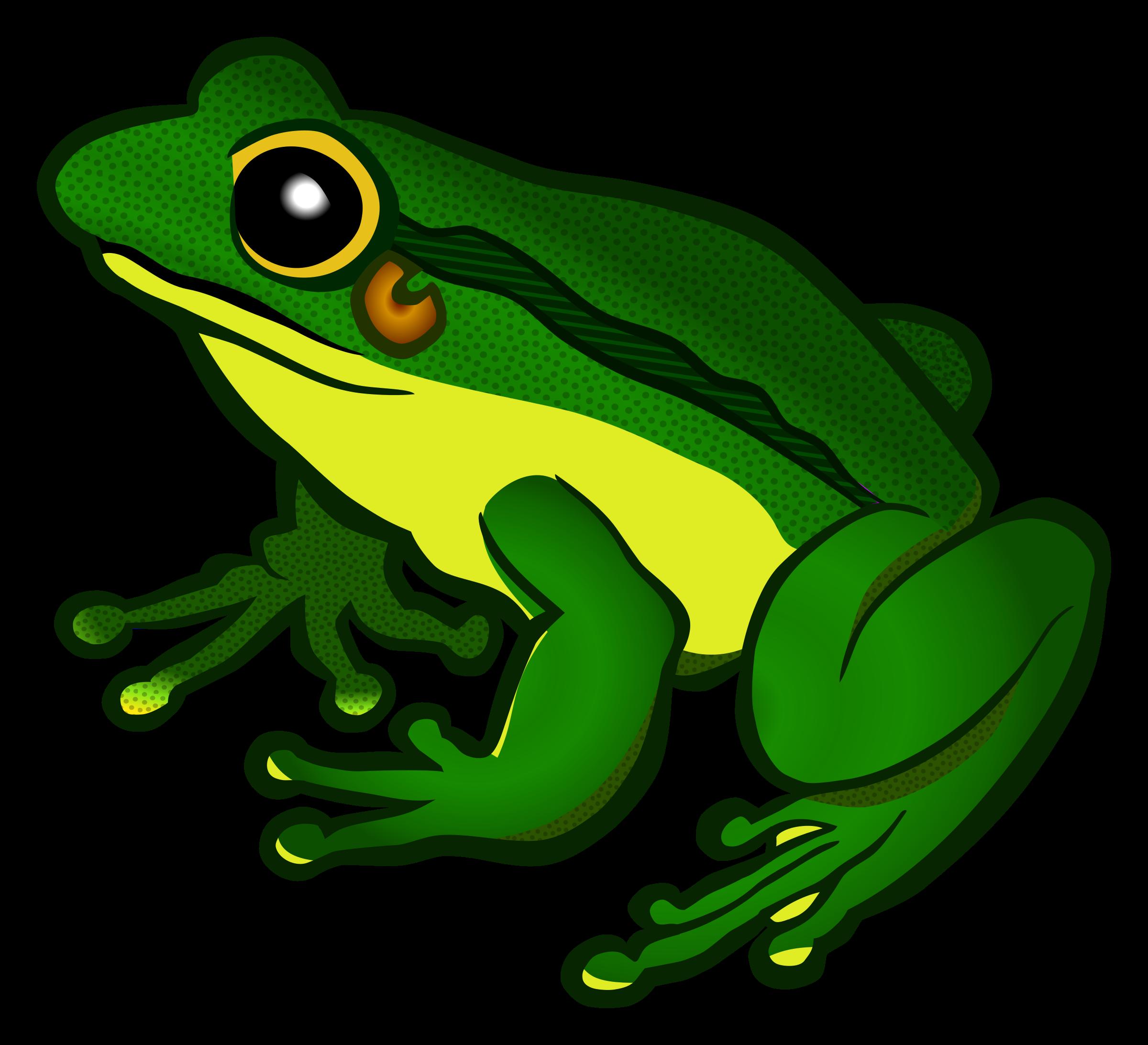 Frog png images transparent. Frogs clipart bullfrog