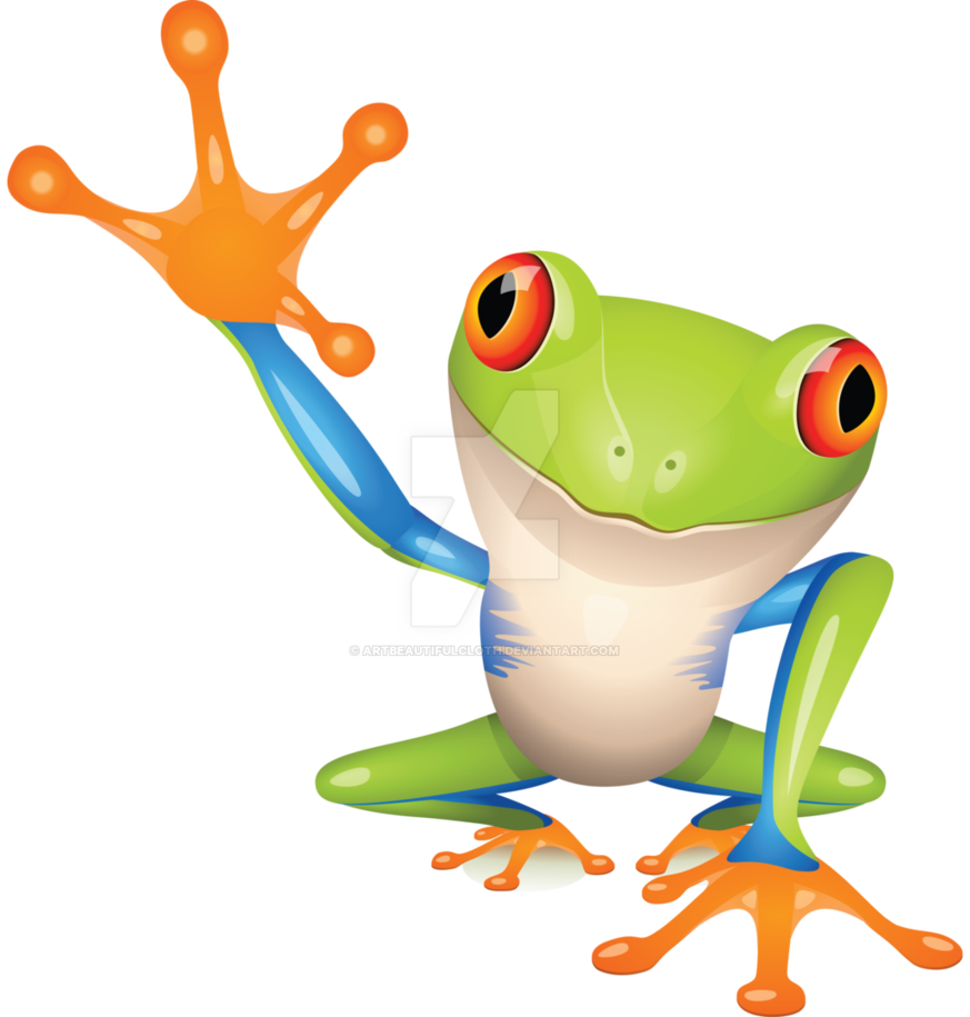By artbeautifulcloth on deviantart. Toad clipart colorful frog