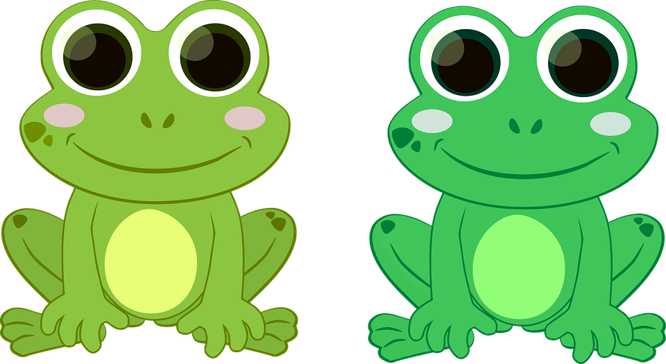 Clipart frog fly. Graphic desktop backgrounds free