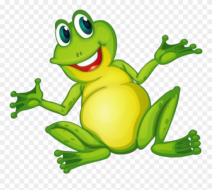 Amphibians drawing image freeuse. Frog clipart glass frog