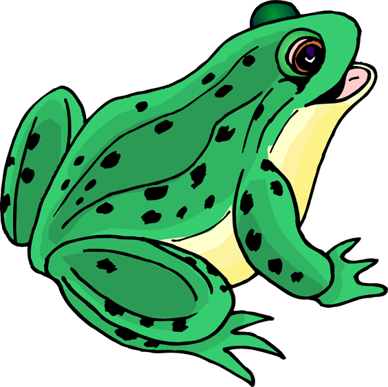 Clipart teacher frog. Jump like a or