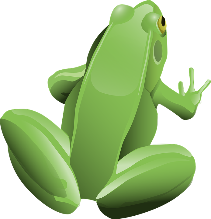 Png image free download. Frog clipart file