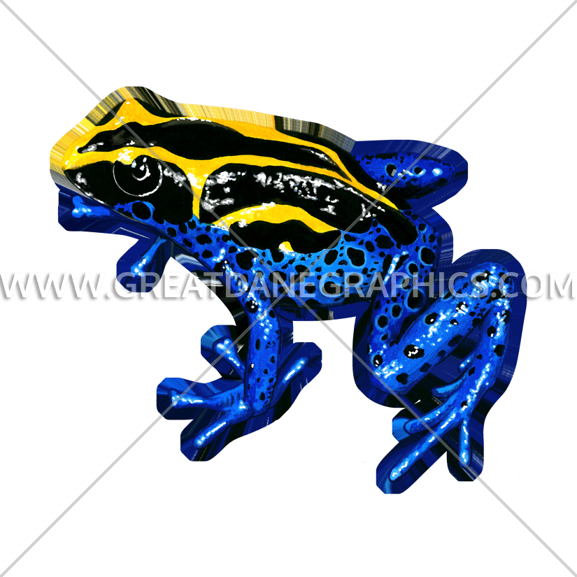 Toad yellow frog