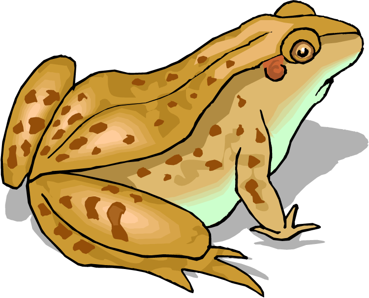 Home clipart frog. Free