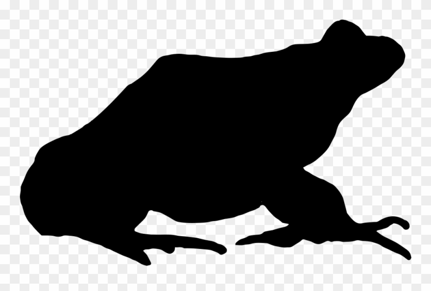 Frog comments pinclipart . Frogs clipart shape