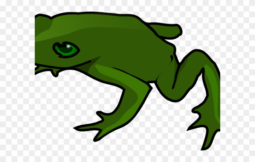 Green frog clip art. Frogs clipart simple