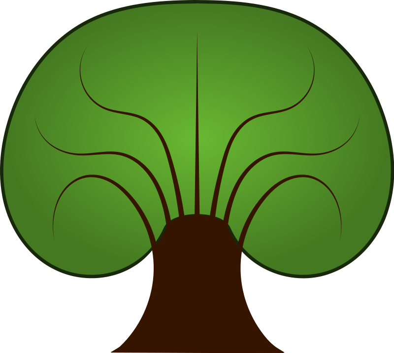 Trunk at getdrawings com. Tree clipart molave