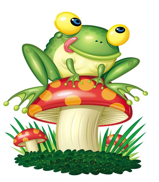 Free download best on. Frogs clipart symmetrical