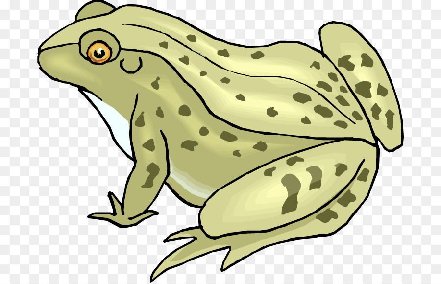 Green tree png download. Clipart frog toad