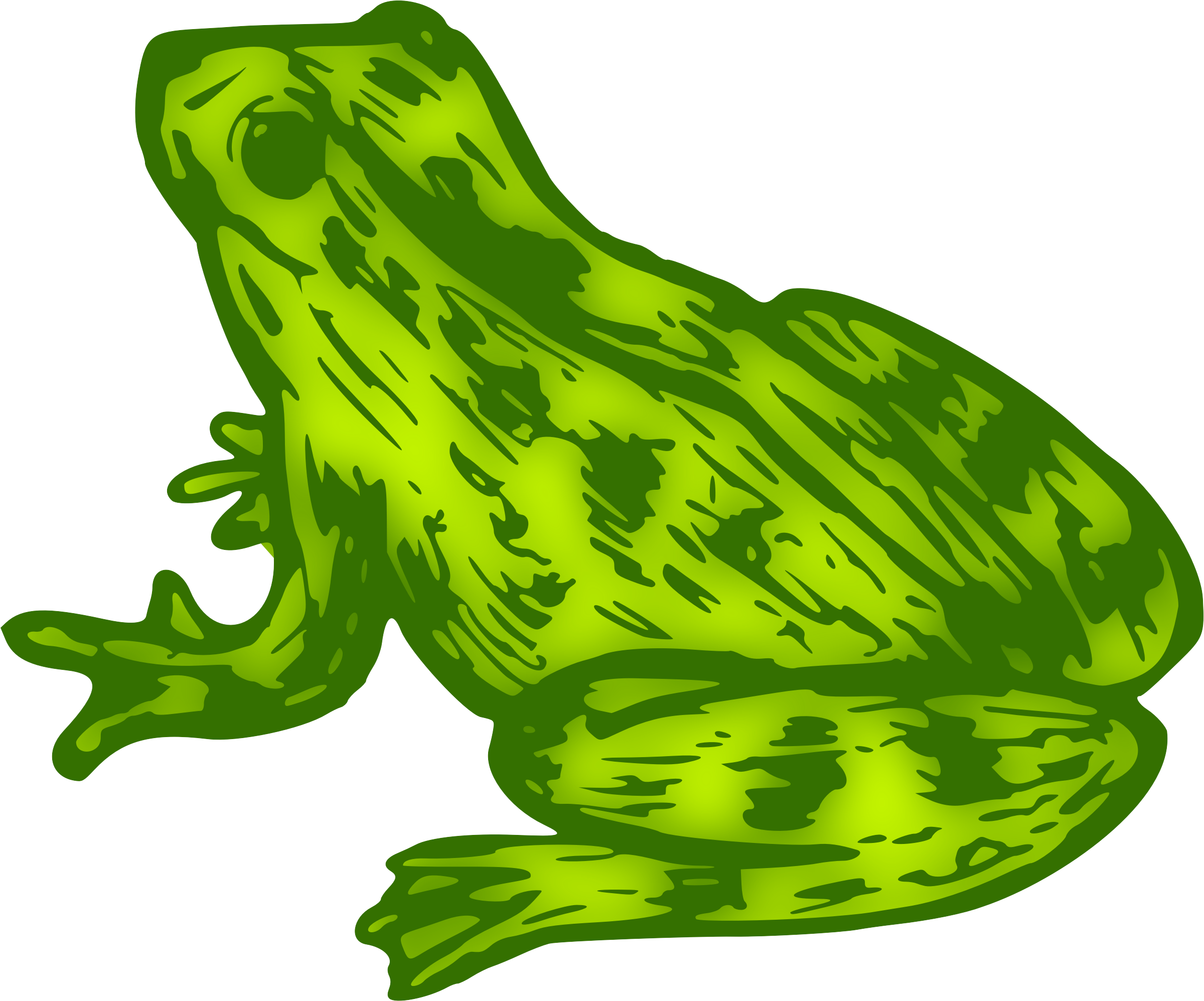 Toad clipart colour green. Frog big image png