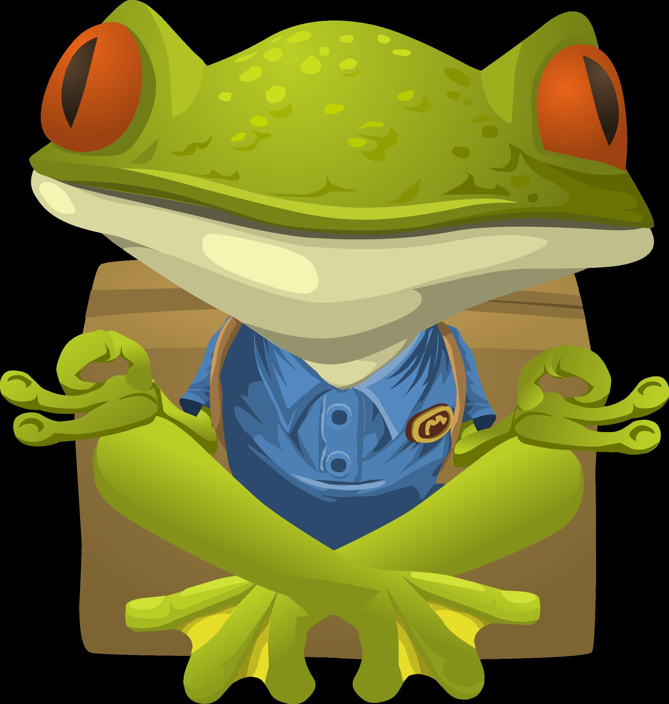 Frogs clipart yoga. Inhabitants npc frog big