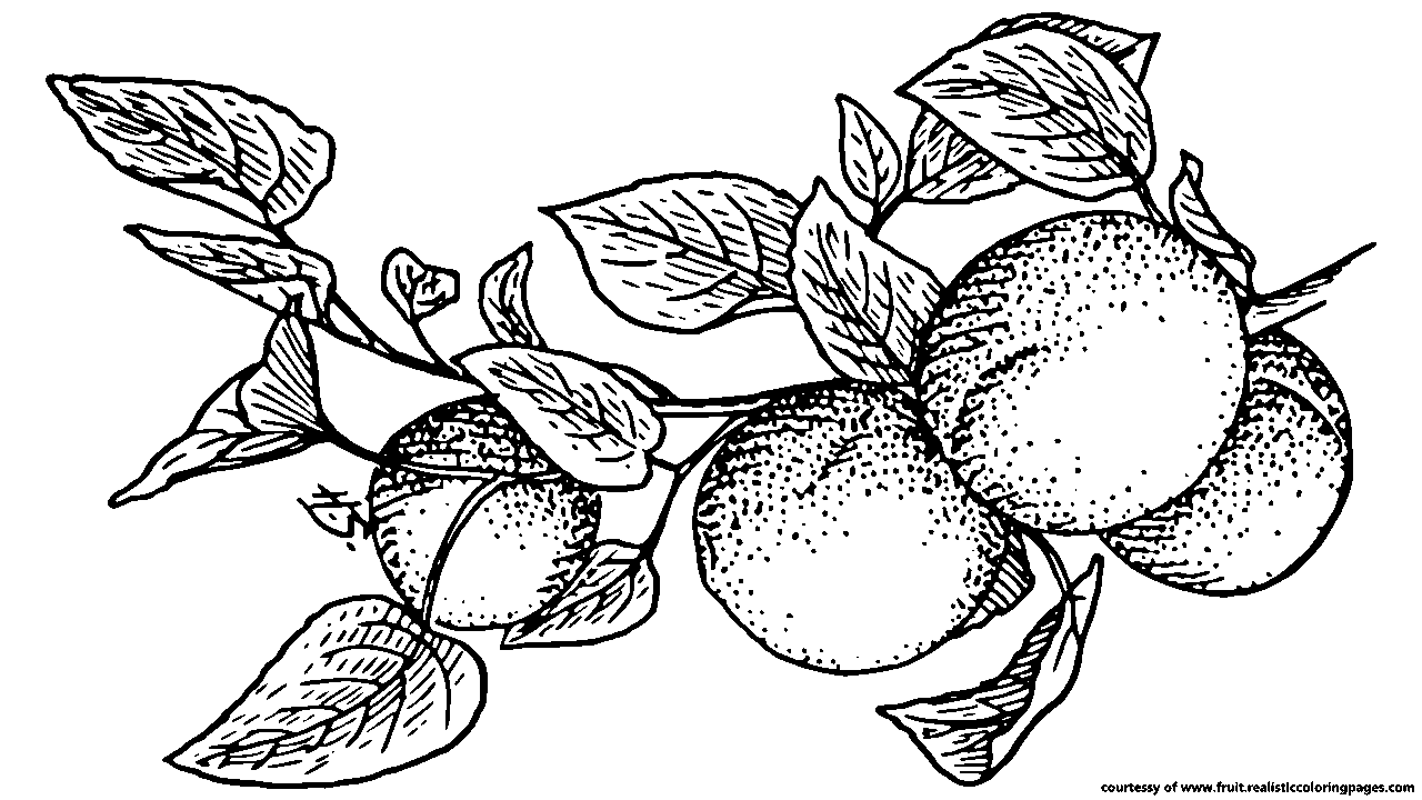 Fruit black and white