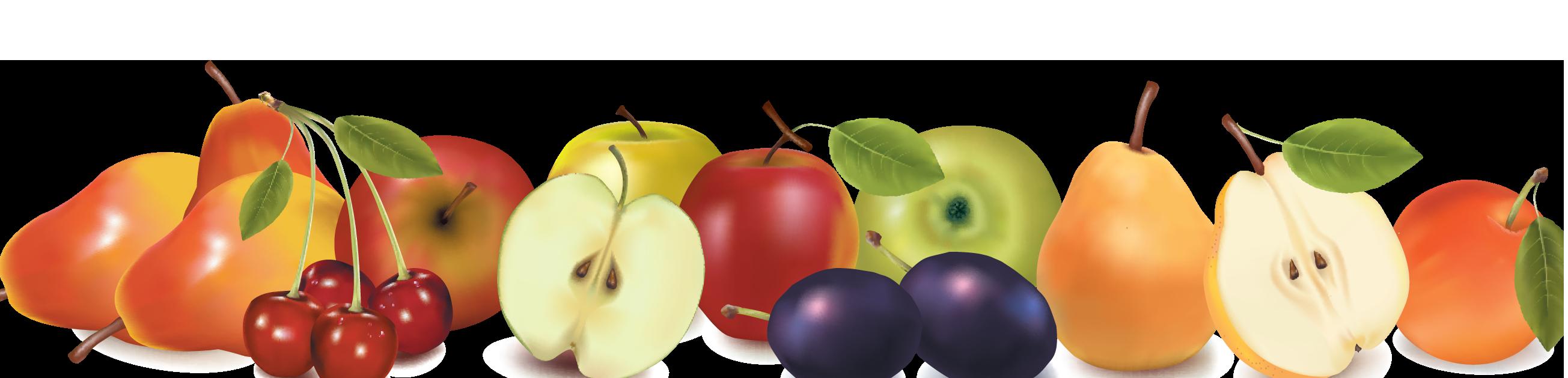Fruits Clipart Border Design Fruits Border Design Transparent Free For Download On Webstockreview 2021