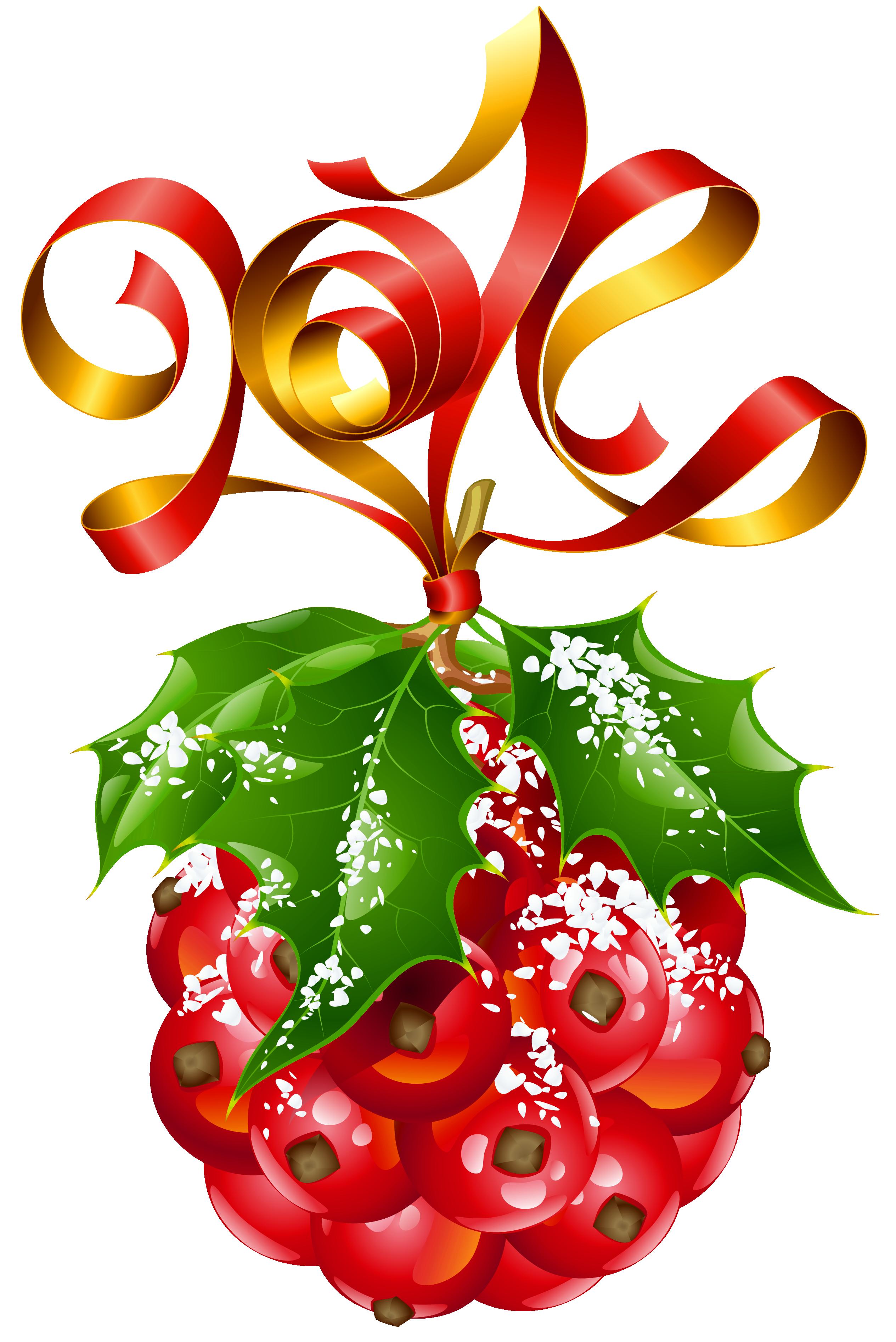 Mistletoe ornament png picture. Clipart fruit christmas