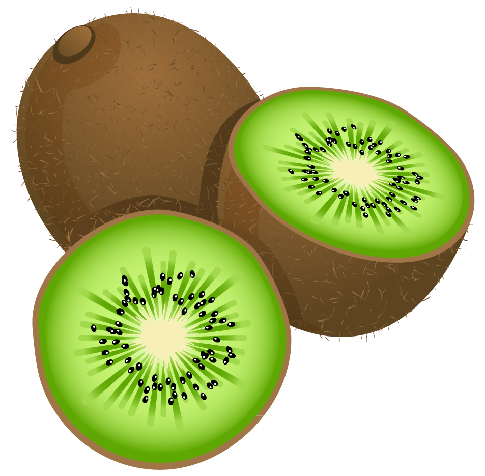 Clipart fruit colored. Large painted kiwi frut
