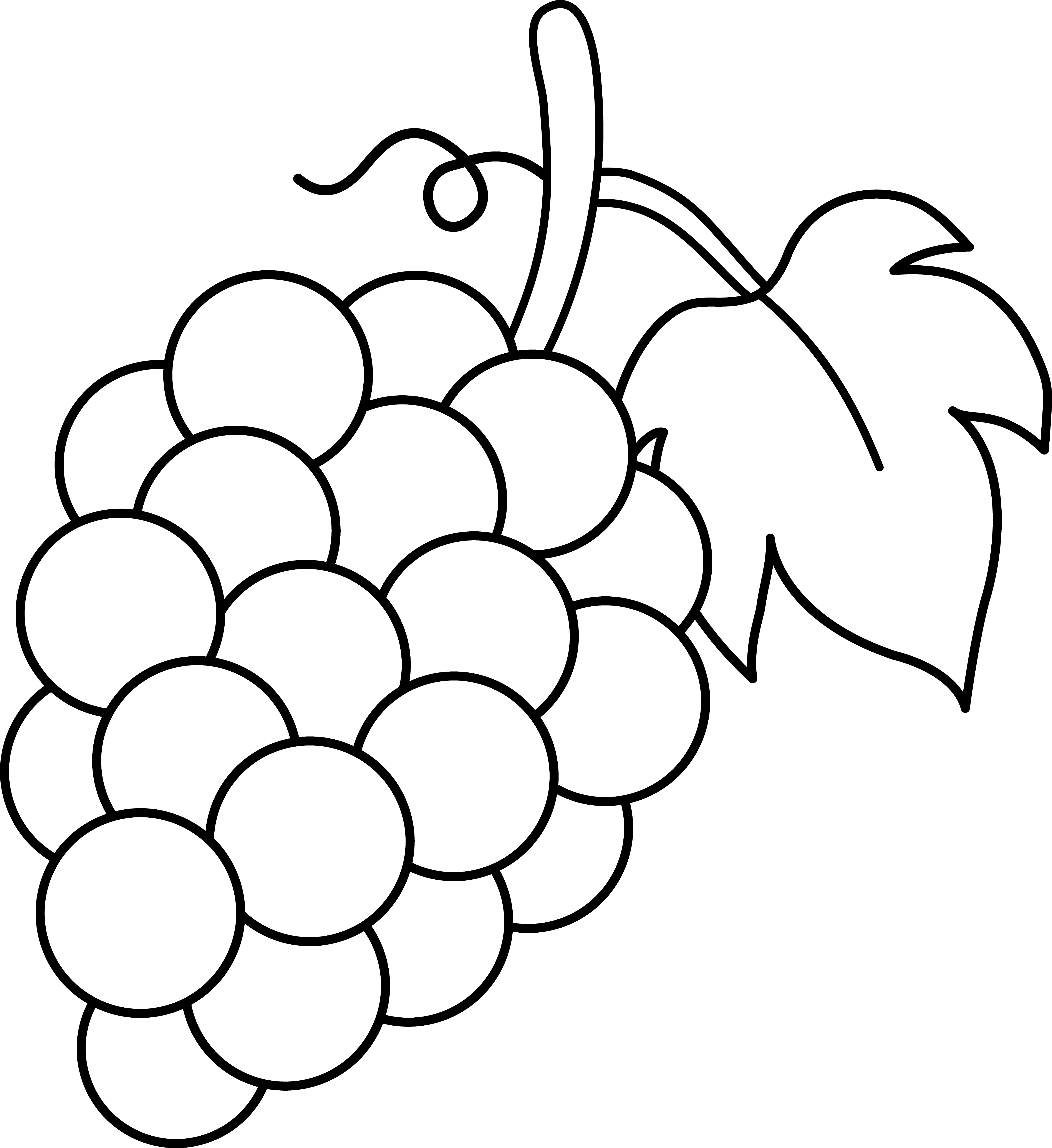 collection of fruit. Grapes clipart bread