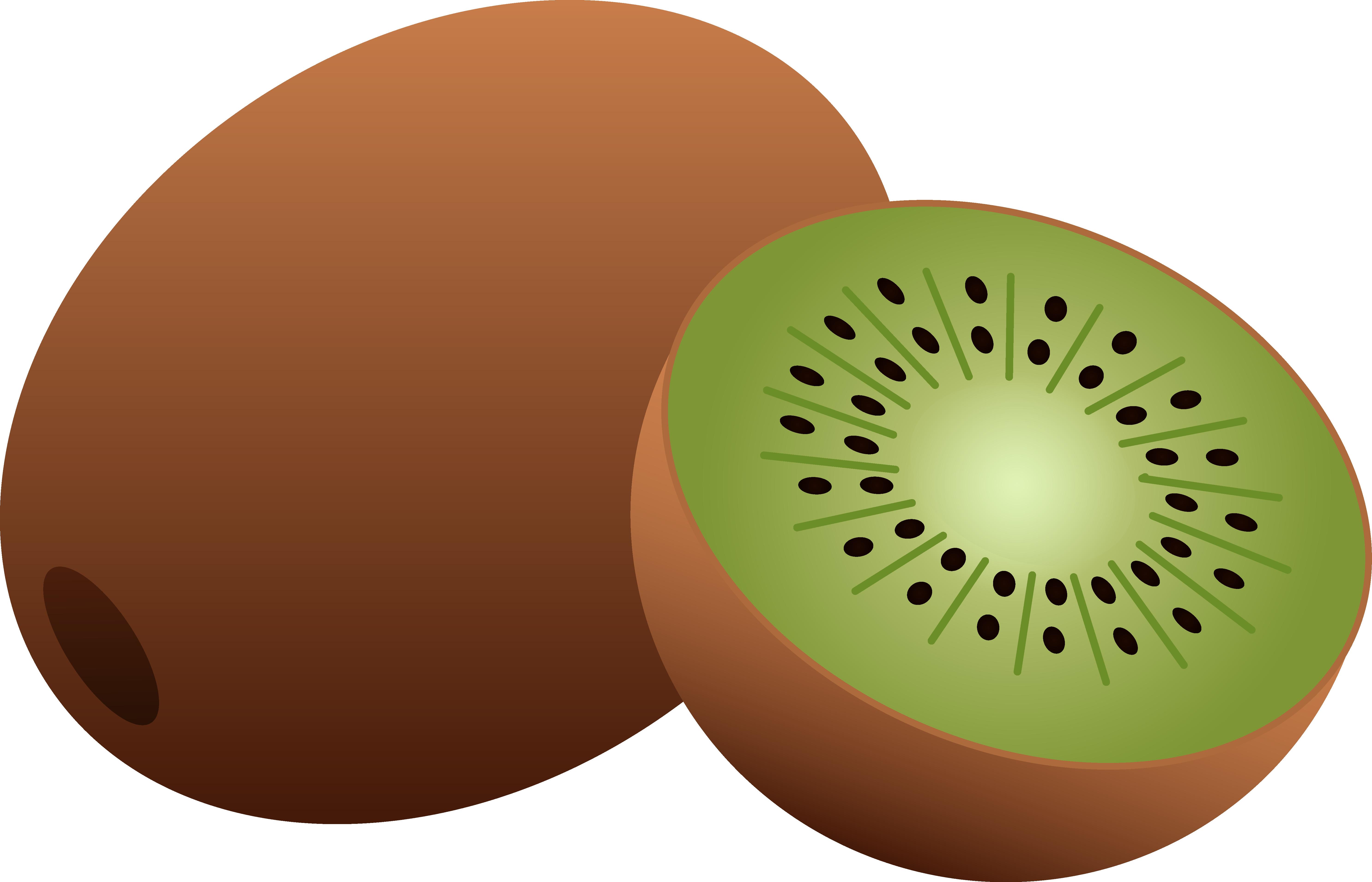 kiwi clipart kind fruit