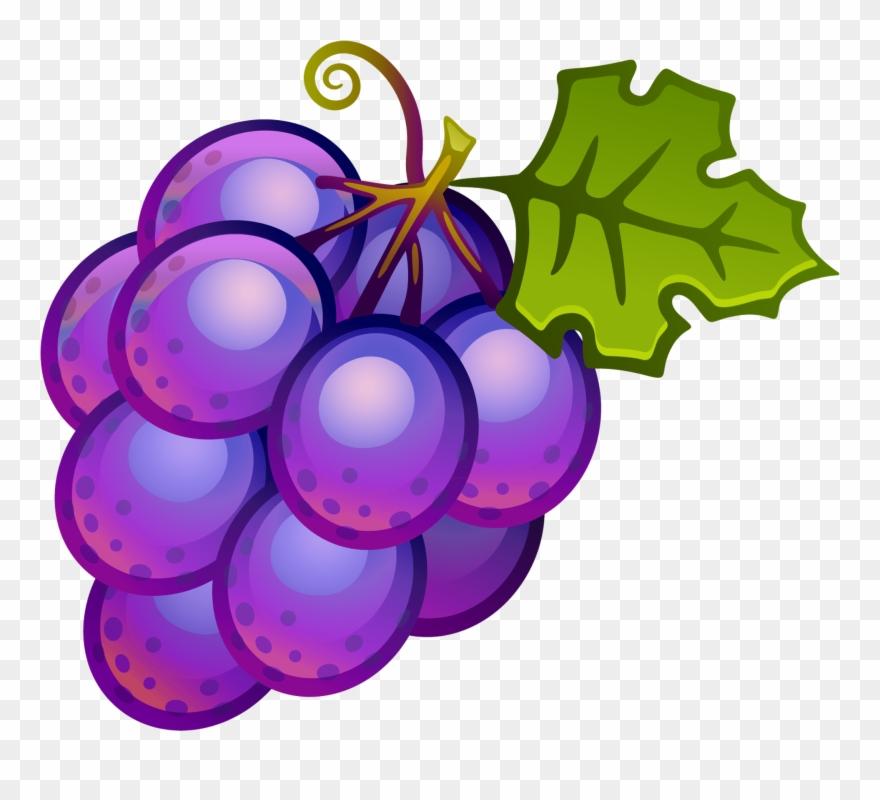 Grapes clip art png. Fruit clipart grape