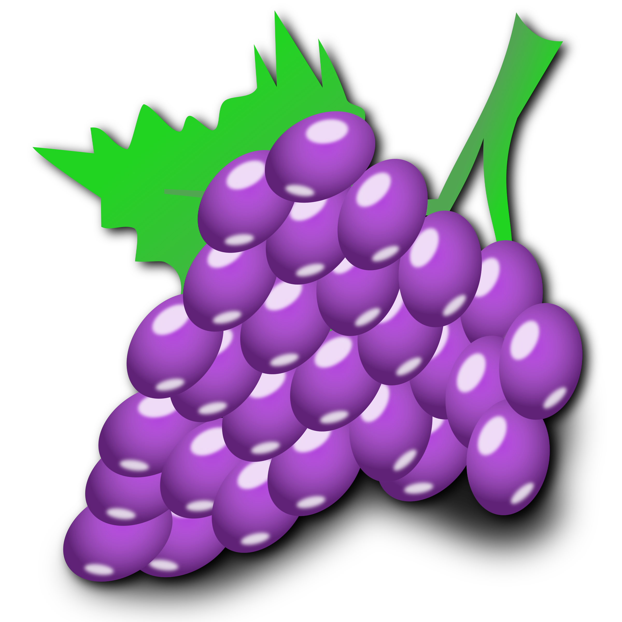 Grapes Clipart Free Download On Webstockreview