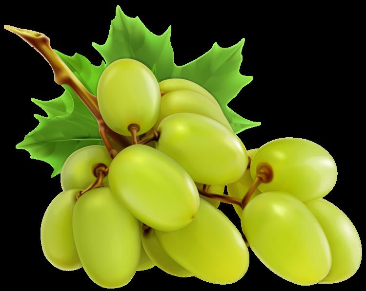 White grapes png . I clipart grape