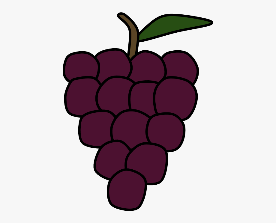 Grapes bunch seedless free. Fruits clipart purple fruit