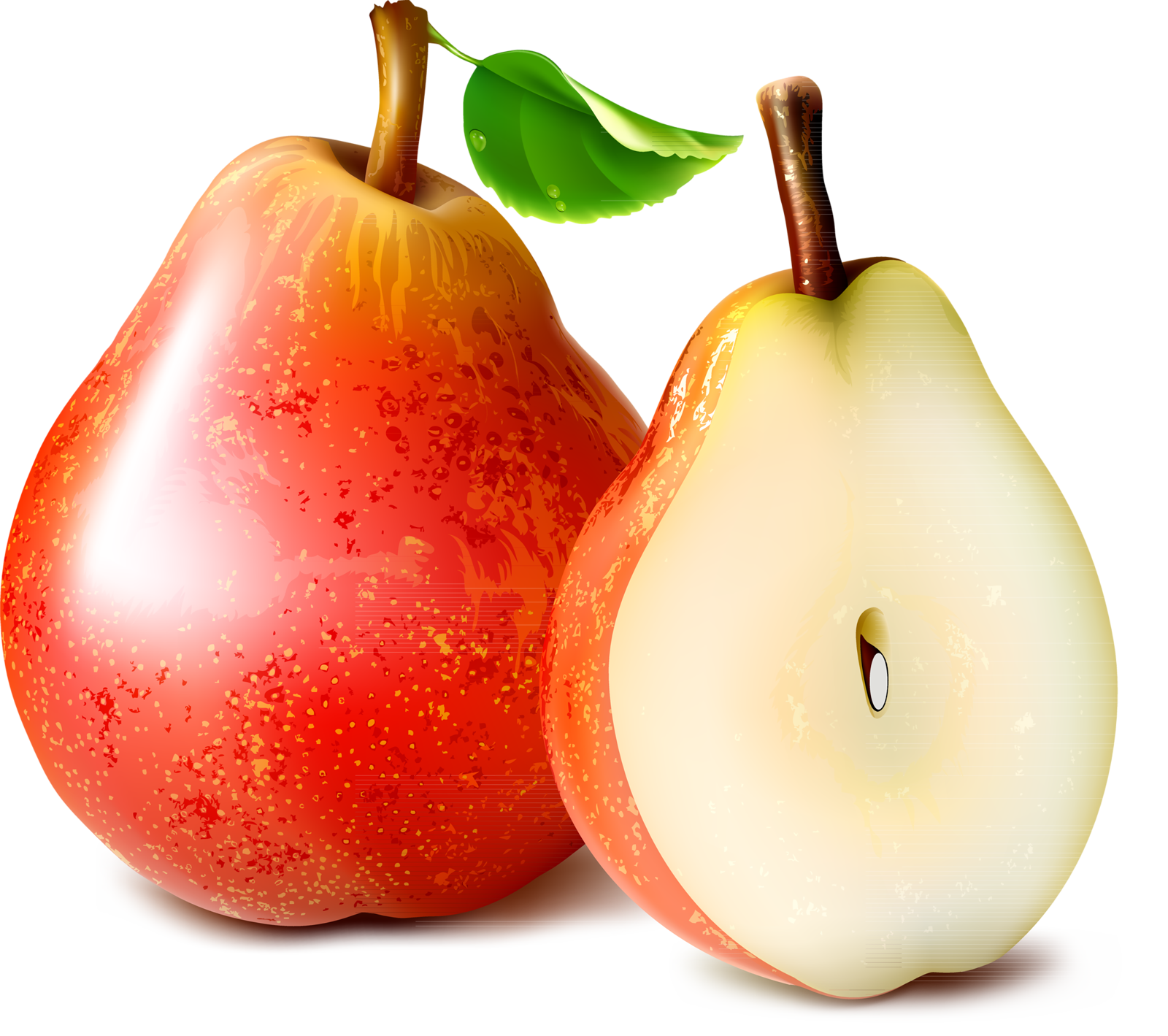 Pear clipart pear slice.  png pinterest clip