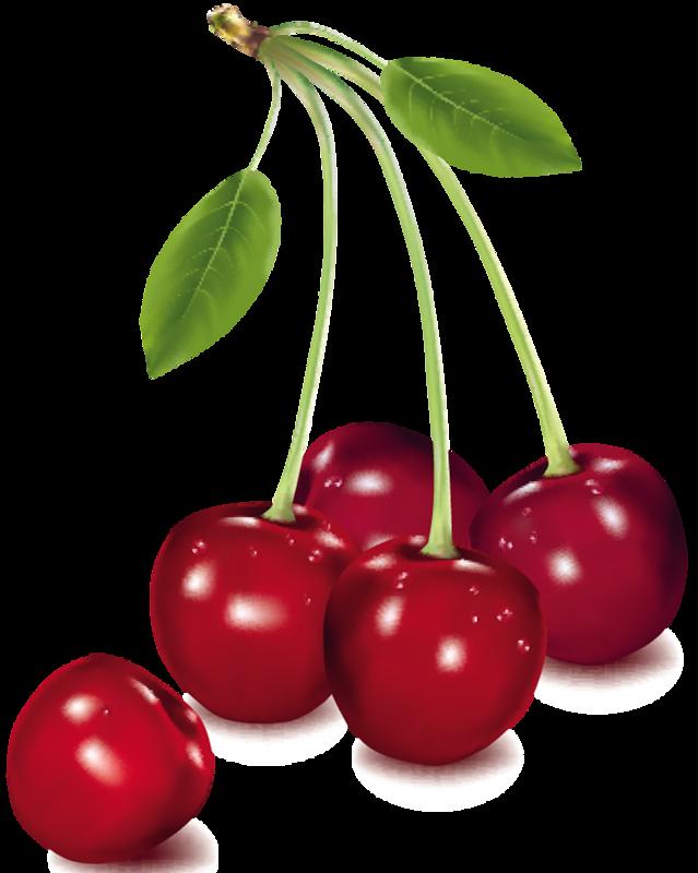 kawaii pinterest cherries. Foods clipart tree