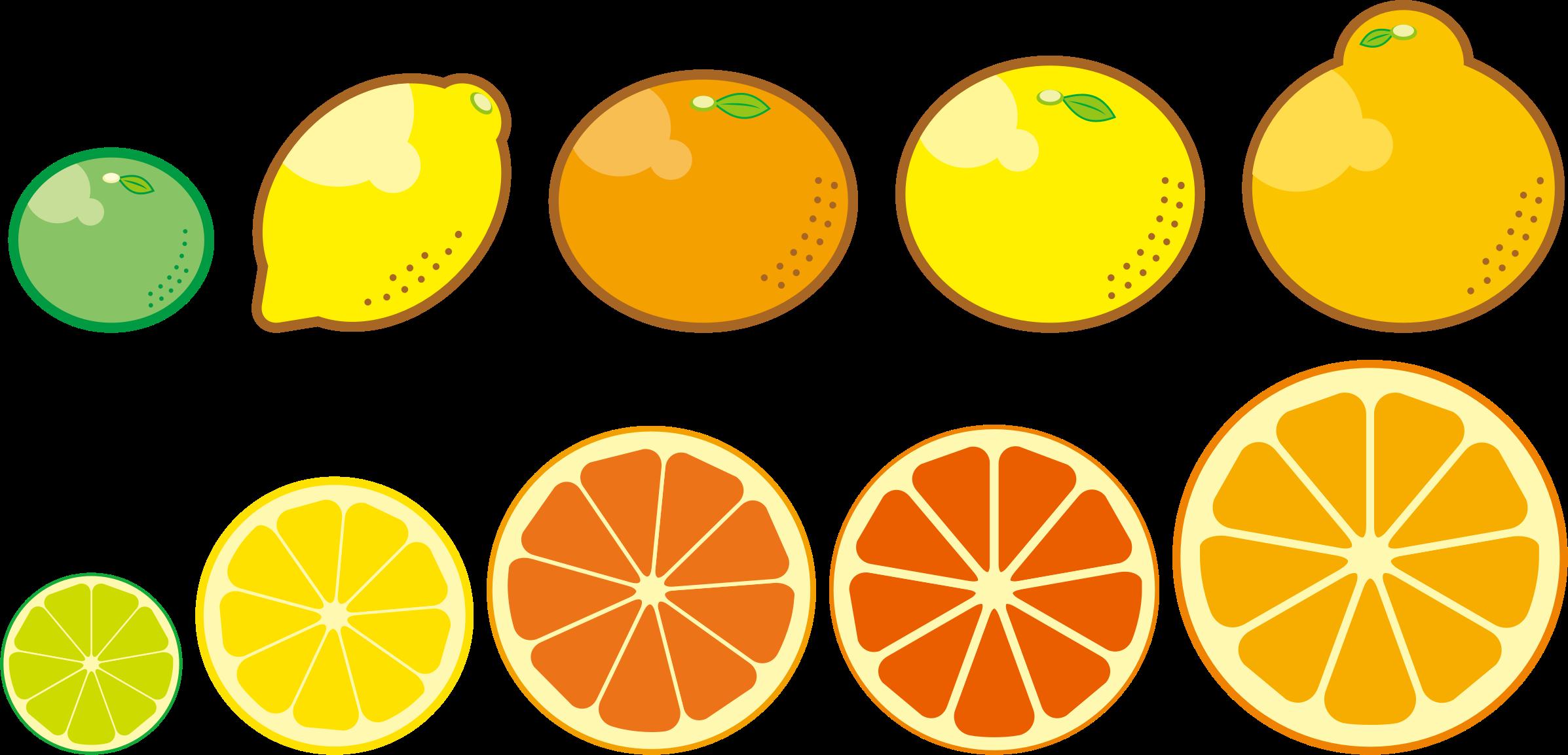 Clipart fruit lemon. Citrus fruits big image