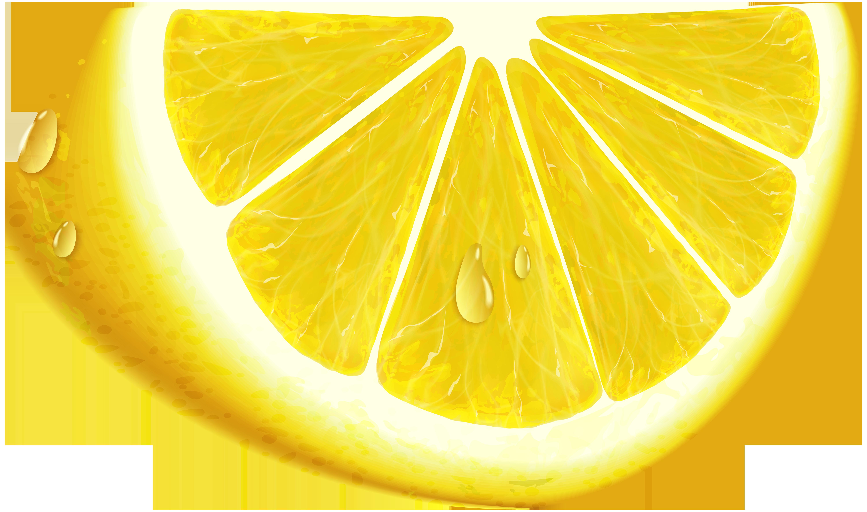 Lemons clipart fruit. Slice of lemon clip