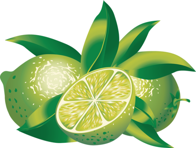 Clip art of citrus. Lemons clipart lime