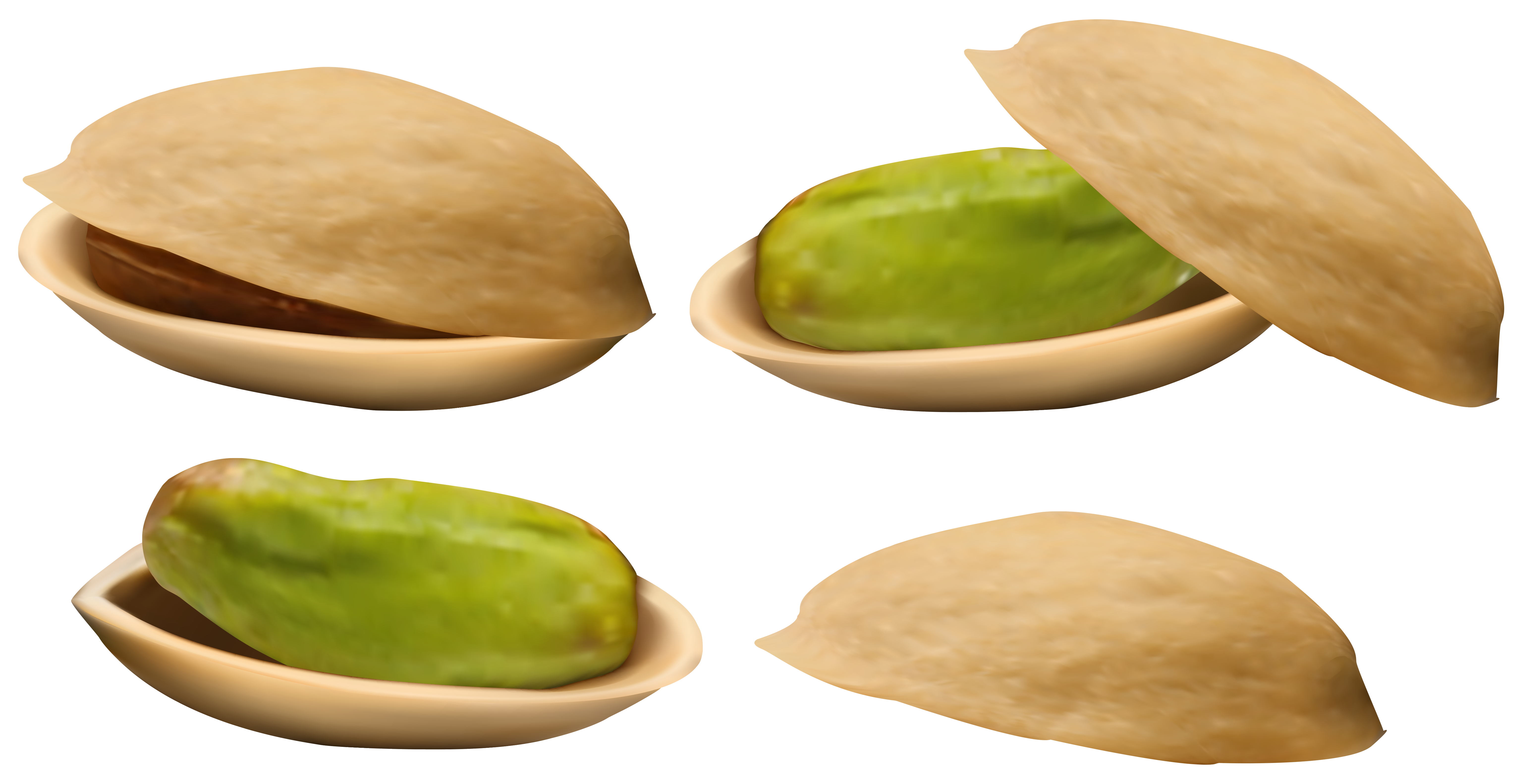 Pistachio png image gallery. Nuts clipart different seed