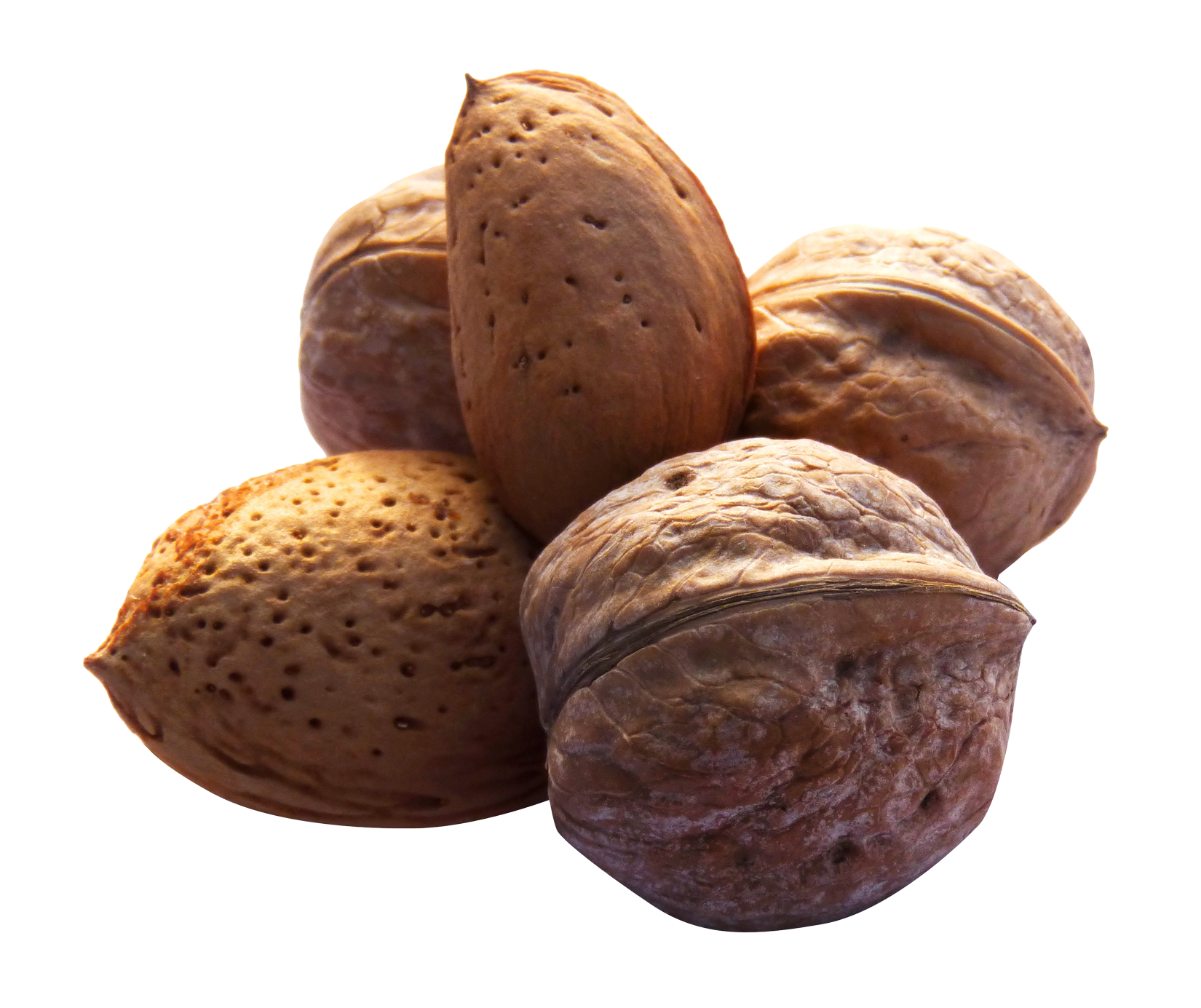 Png image purepng free. Fruit clipart nuts