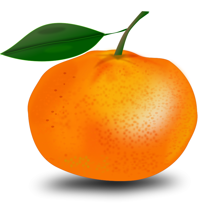 Clipart fruit orange. Free stock photo illustration