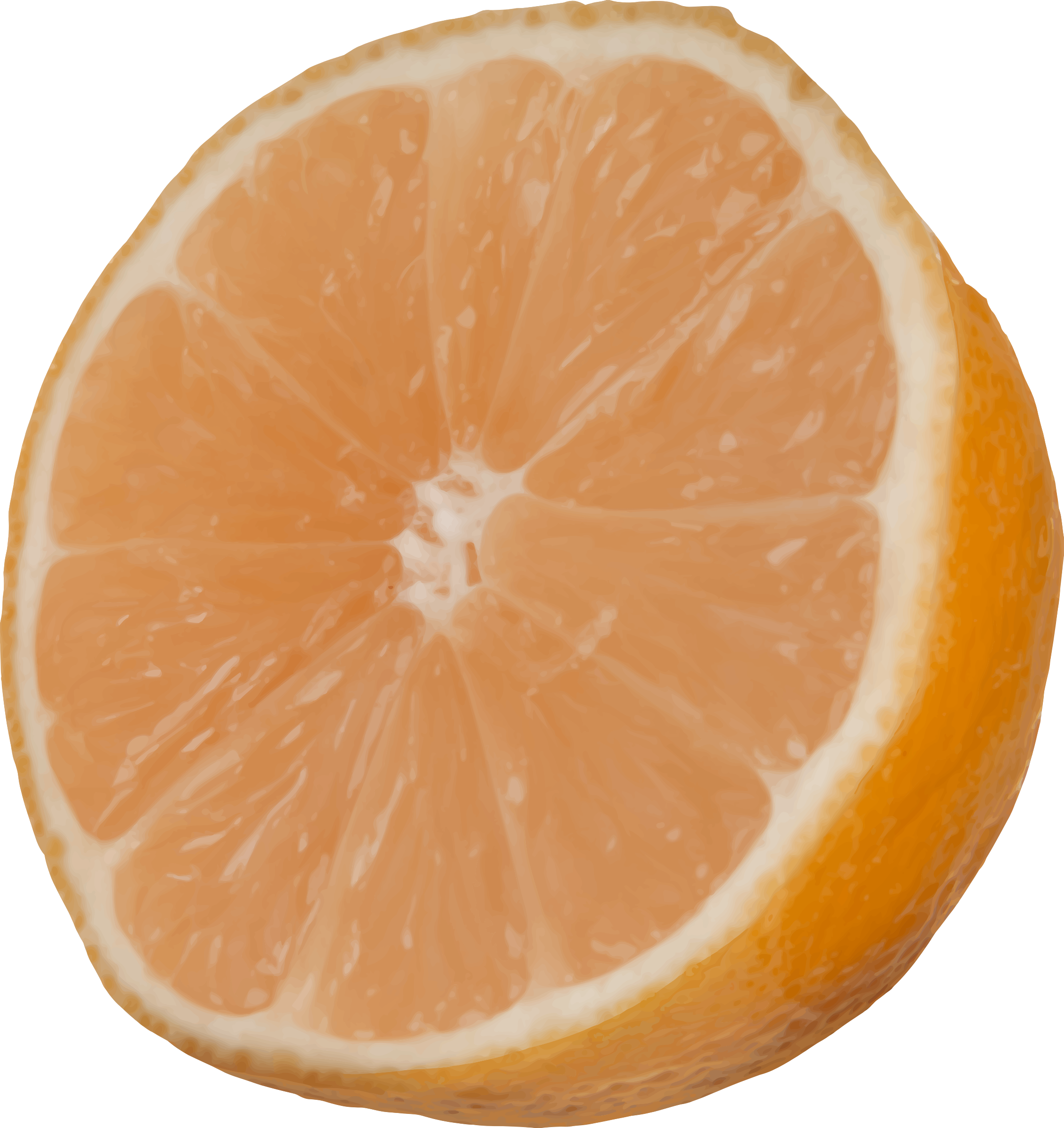 Cut big image png. Clipart fruit orange