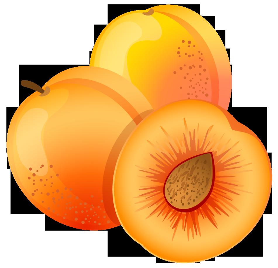 Large painted apricot png. Fruit clipart transparent background