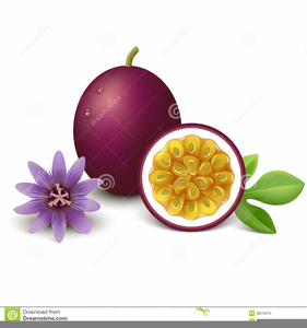 Free images at clker. Clipart fruit passion fruit