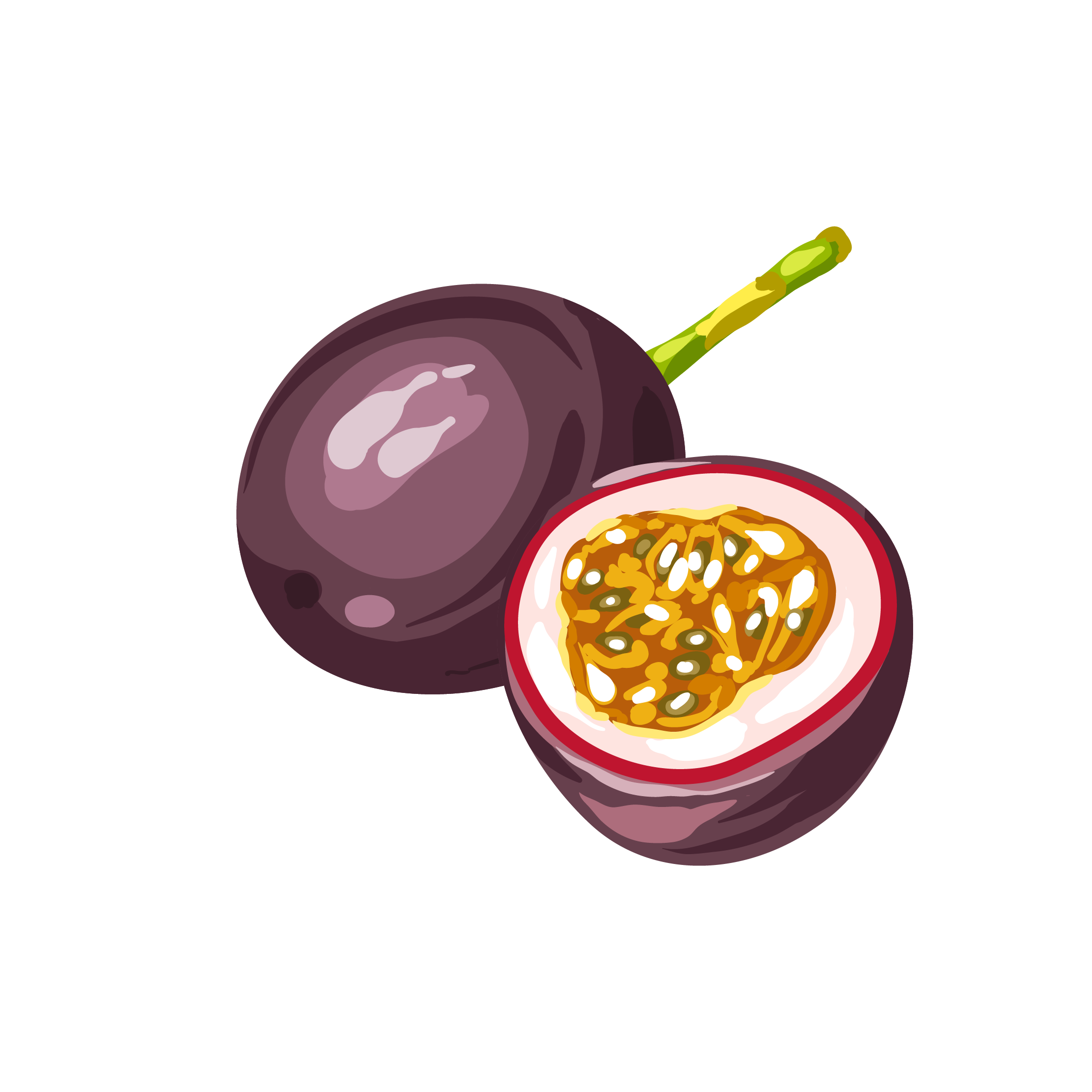 Royalty free stock photography. Clipart fruit passion fruit