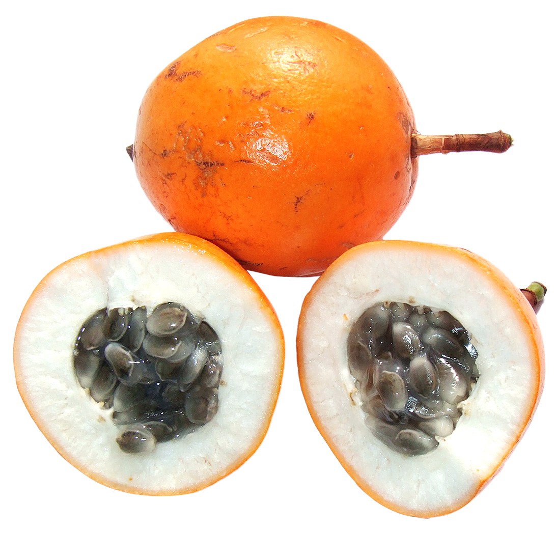 Png image purepng free. Clipart fruit passion fruit