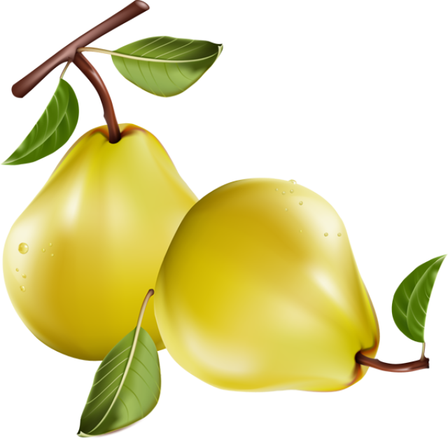 Pear clipart pear fruit. Great clip art of