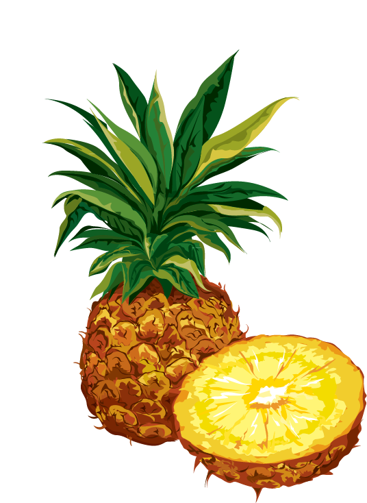 Pineapple clipart pineaplle. Dried fruit organic food