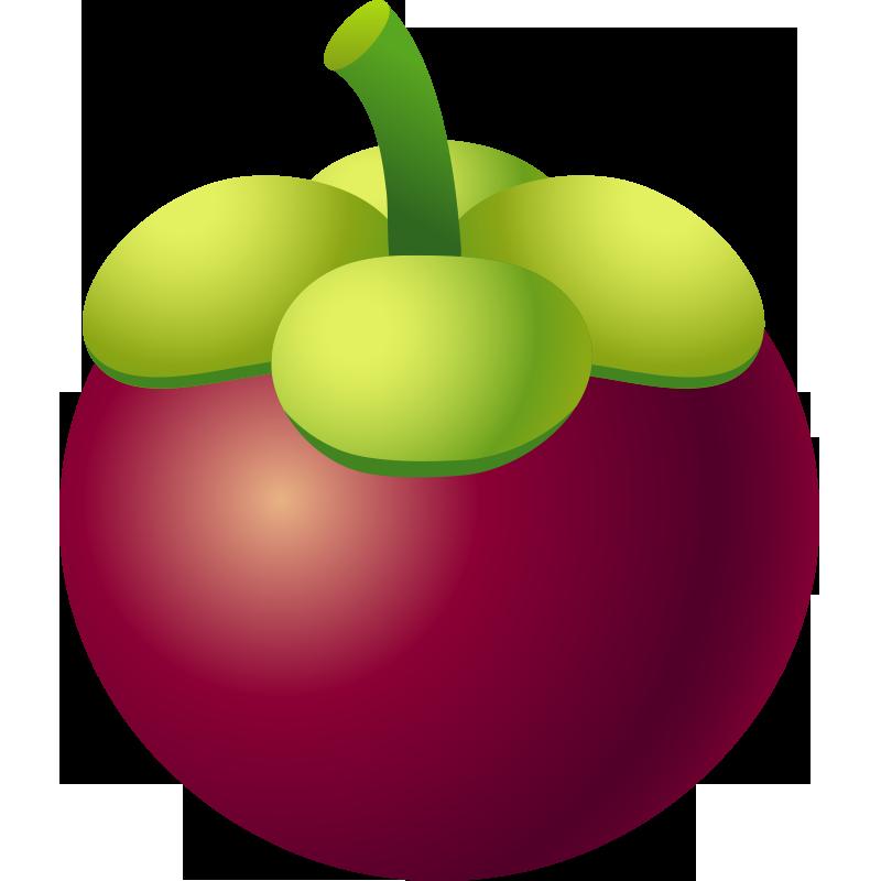 Fruits clipart purple fruit. Mangosteen vegetable melon food