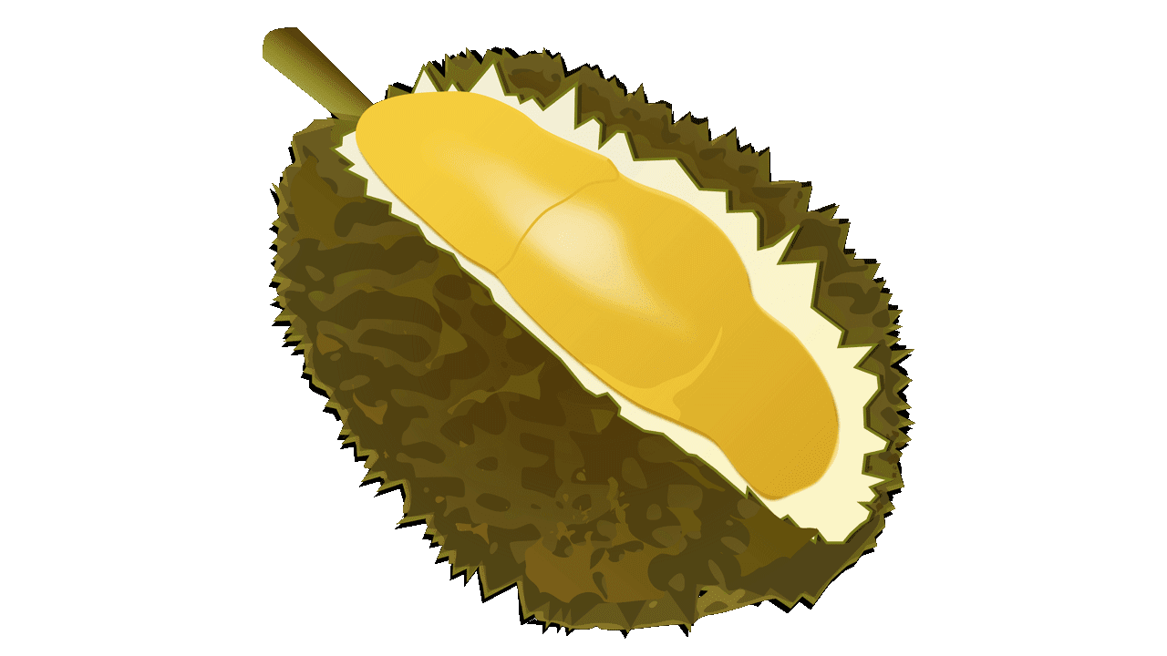 Fruits clipart sandwich. Durian royalty free fruit