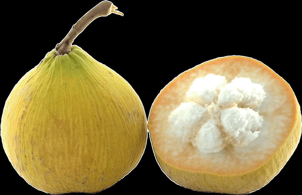 Hd fruit transparent png. Fruits clipart santol