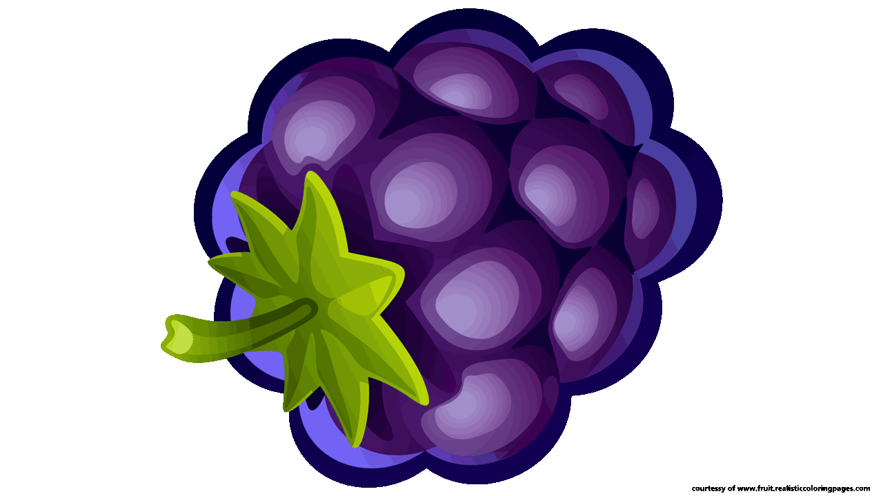 Blueberry png collection. Clipart fruit single