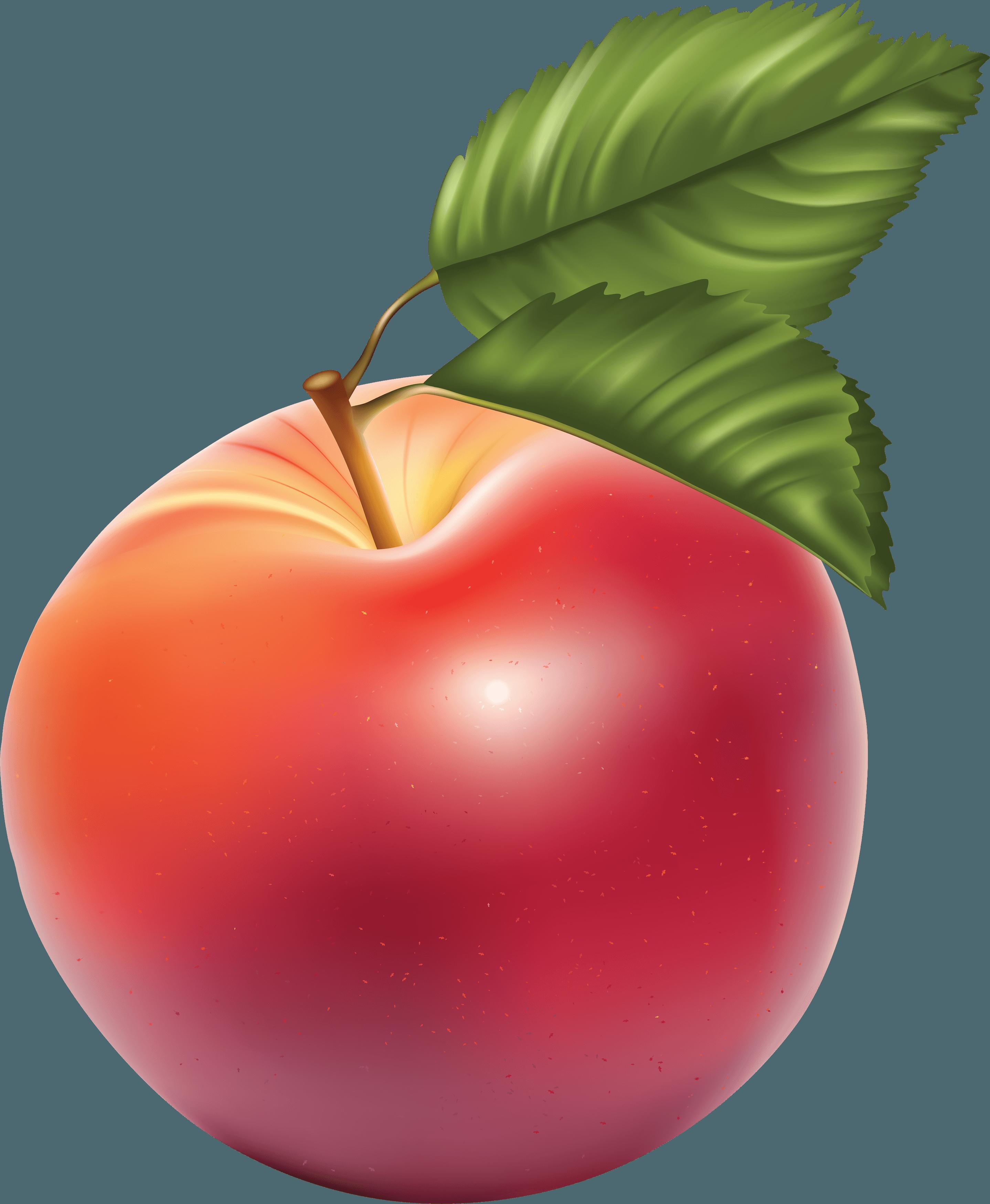 png image transparent. Fruit clipart star apple