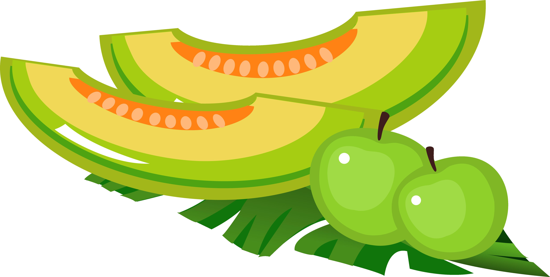 Cartoon melon transprent png. Lime clipart summer fruit