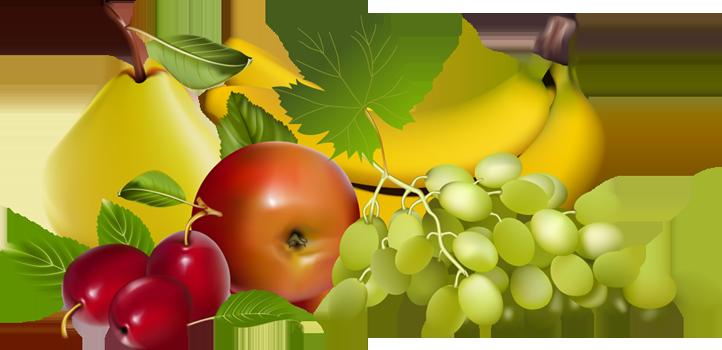 Free fruit download clip. Fruits clipart transparent background
