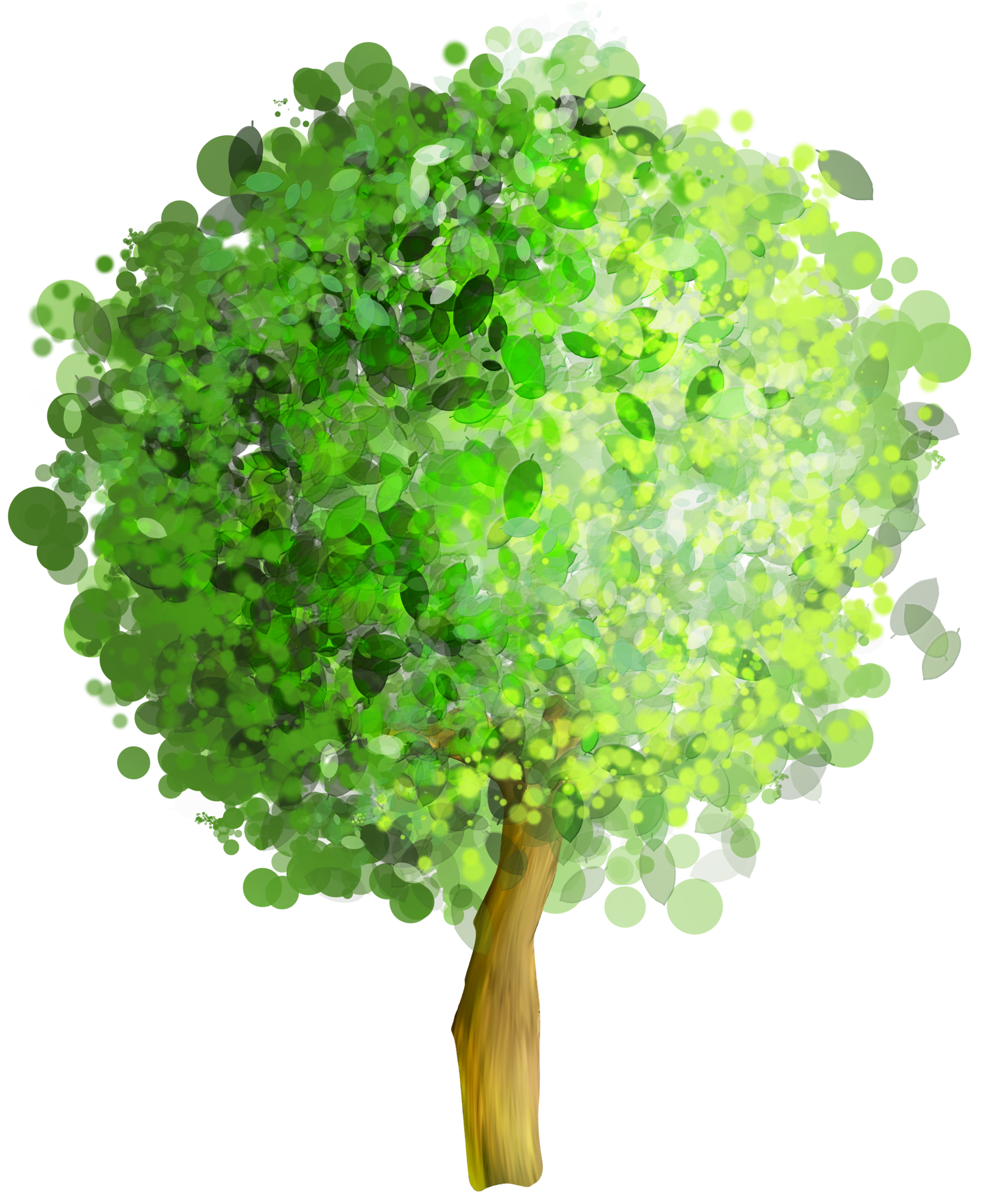 Green art png gallery. Tree clipart watercolor